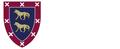Logo Fesei